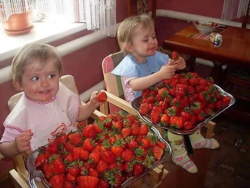Кто не любит клубнику?